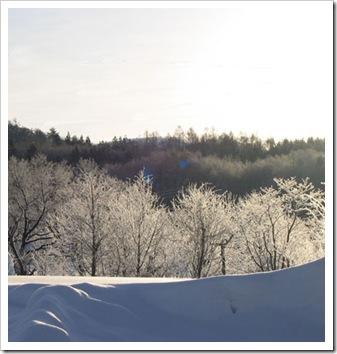 霧氷-2006-1s