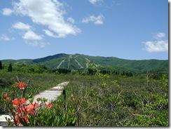 湿原公園から大日岳